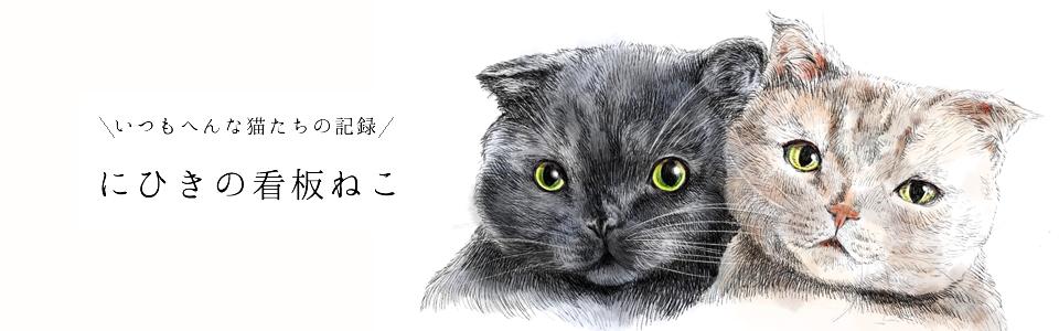 毎日へんな猫の記録 にひきの看板ねこ