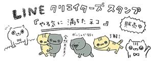 やる気に満ちたネコ